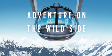 Adventure on the Wild Side, Pittsford, New York