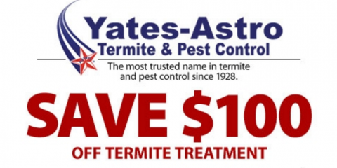 SAVE $100 ON TERMITE TREATMENT, Savannah, Georgia