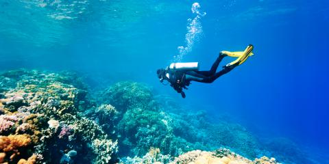 What to Do to Become a Certified Scuba Diver, Rochester, New York