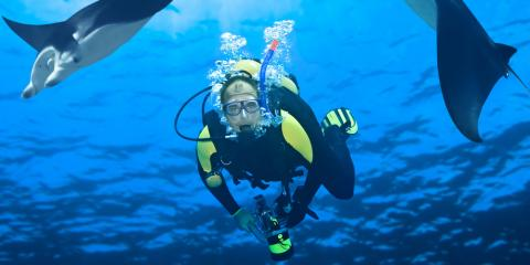 Scuba Diving Certification: 3 Ways to Identify a Quality Program , Kettering, Ohio