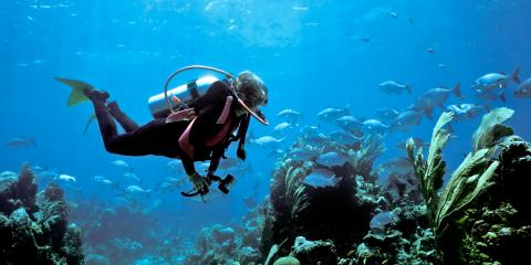 4 Questions Beginners Commonly Ask About Scuba Diving, Queens, New York