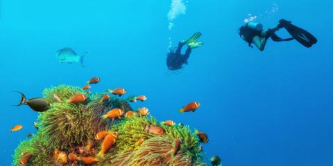3 Tips for Staying Calm While Scuba Diving, Rochester, New York