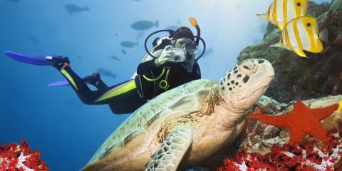 3 Top Tips for Beginner Scuba Diving , Honolulu, Hawaii