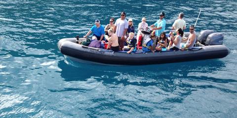 3 Reasons to Go to Nu'alolo Kai with Kauai Sea Tours, Kekaha-Waimea, Hawaii