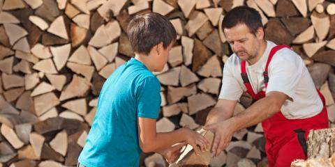 Top 3 Tips for Keeping Pests Out of Your Seasoned Firewood, St. Louis, Missouri