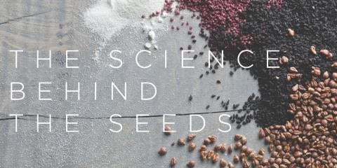 4 Ways That Seed Nutrition Benefits Your Body, Brooklyn, New York