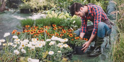 How to Upgrade Your Home's Landscape to Sell, Des Peres, Missouri