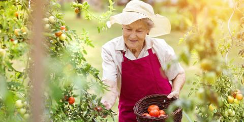 4 Ways to Enjoy the Outdoors at Your Senior Living Home This Spring , Powell, Ohio