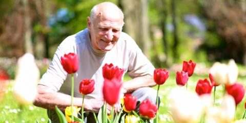 5 Springtime Activities To Do With Elderly Loved Ones, Jefferson, Missouri
