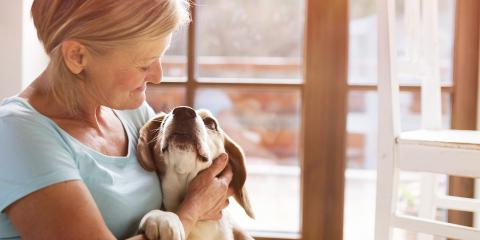 How to Make the Most of Your Pet's Last Day, Atlanta, Georgia