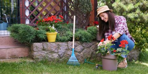 3 Tips for Septic Tank Landscaping , Irondequoit, New York