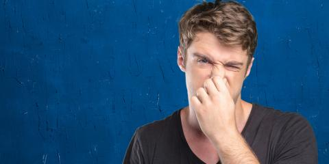 San Antonio Odor Removal Pros Share 3 Causes & Solutions for Bad Smells, San Antonio, Texas
