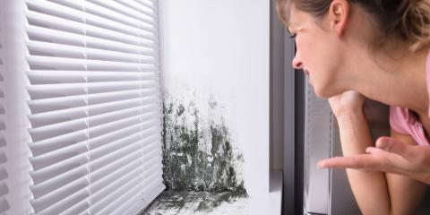How to Determine the Need for Mold Remediation, Columbia, Missouri