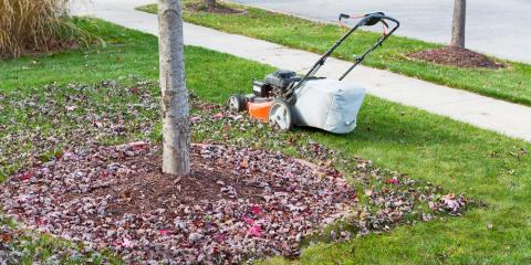 5 lawn maintenance tips for fall schryver 39 s tree and landscape llc seymour nearsay - Autumn lawn care advice ...