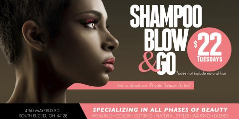 $22 Summer Shampoo Blow and Go Every Tuesday, South Euclid, Ohio