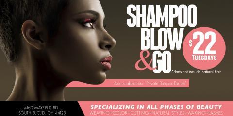 $22 Summer Shampoo Blow and Go Every Tuesday, South Euclid, Ohio