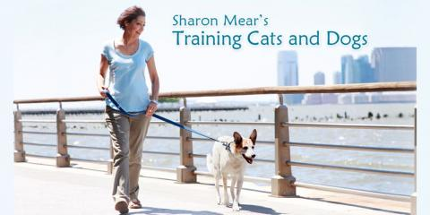 Sharon Mear's Training Cats and Dogs, Dog Training, Services, New York, New York