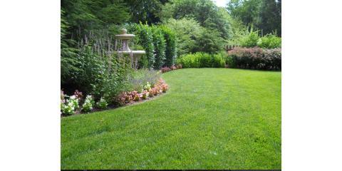Sharp Lawn Inc. , Lawn and Garden, Services, Lexington, Kentucky