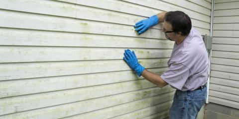 3 Tips for Preventing Mold Growth on Siding, Elyria, Ohio