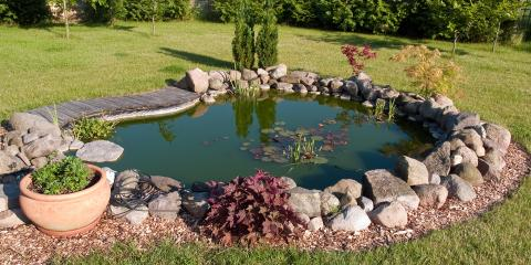 4 Benefits of Having a Pond in Your Yard, Maui County, Hawaii