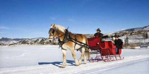 Sleigh Rides Set the Stage for the Perfect Romantic Adventure , Palmer, Alaska