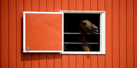 3 Design Factors to Consider When Installing New Barns, Slocomb, Alabama