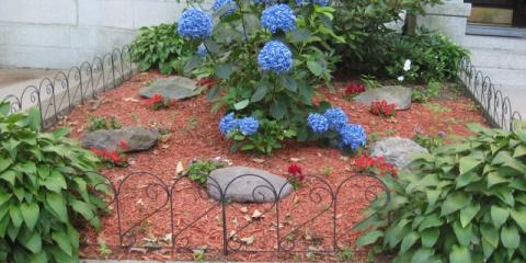 Attractive yard maintenance can add 10% to the value of your home, Brooklyn, New York