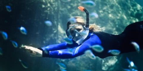 5 Enlightening Tips for Using Your Snorkel Gear to Dive at Night, Lahaina, Hawaii
