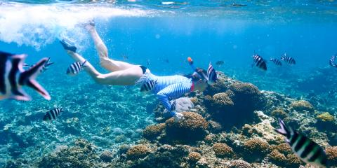 4 Colorful Fish to Spot on Your Hawaii Snorkeling Tour, Waianae, Hawaii