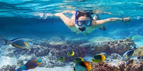 A Snorkeling Guide for Beginners, Waianae, Hawaii