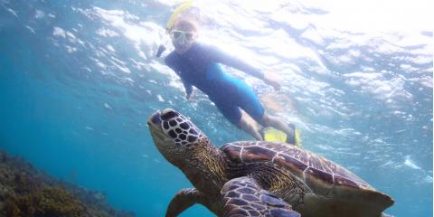 5 Essentials to Pack for a Snorkeling Tour, Lahaina, Hawaii