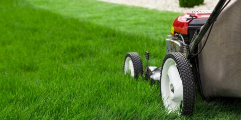 Which Lawn Mower Is Right for Your Yard?, Homer, Alaska