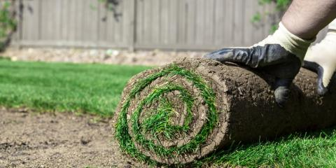 3 Facts You Should Know About Lawn Sod, Hill, Arkansas