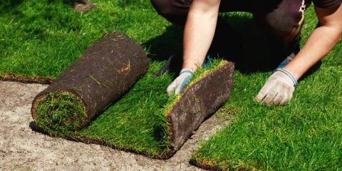 Top 4 FAQ About Sod Installation, Columbia, Missouri