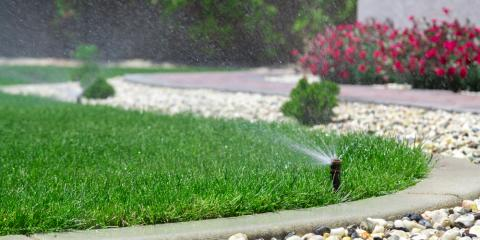 What to Do After Your New Sod Is Installed, Hill, Arkansas