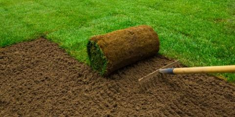 3 Tips for Installing Sod During Winter, Hill, Arkansas