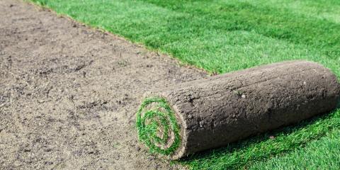 3 Advantages of Sod Installation, Hill, Arkansas