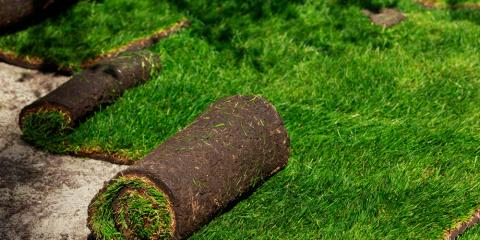 4 Essential Sod Maintenance Tips, Wahiawa, Hawaii