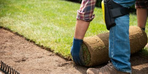 How to Care for Your Newly Installed Sod, Wahiawa, Hawaii
