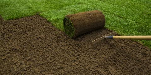 4 Maintenance Tips for Newly Sodded Yards, Dayton, Ohio