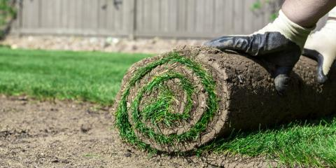 4 FAQs About Sod Answered, Harrisburg, North Carolina