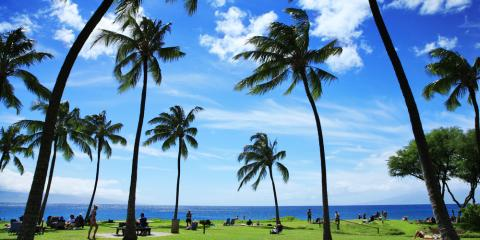 4 Reasons Hawaii Is Perfect for Solar Power, Honolulu, Hawaii