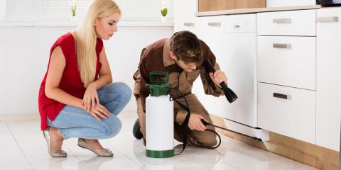 4 Reasons Why Hiring a Pest Control Company Is Totally Worth It, 2, Tennessee