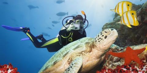 5 Scuba Diving Trip Destinations to Escape the Cold Weather, Kettering, Ohio