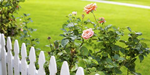 5 Reasons to Choose a Picket Fence, Spencerport, New York