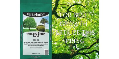 Spring Fertilization Trees and Shrubs, Delhi, Ohio