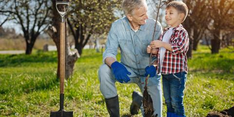 3 Spring Insect Control Tips for Your Landscaping, Enterprise, Alabama