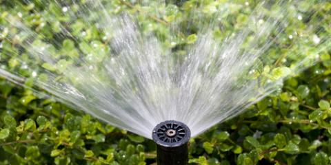 Determining the Best Irrigation or Sprinkler System for Your Plants, Ewa, Hawaii