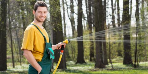 How to Properly Water Your Lawn & Avoid Common Mistakes, Lincoln, Nebraska