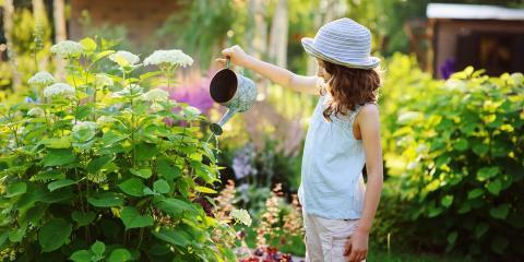 3 Tips for Low-Maintenance Landscape Design, Elberta, Alabama